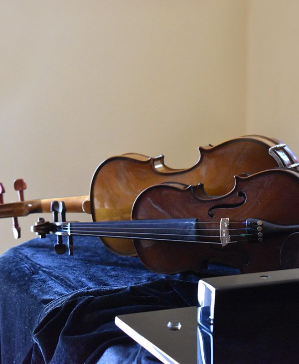 organa-strings